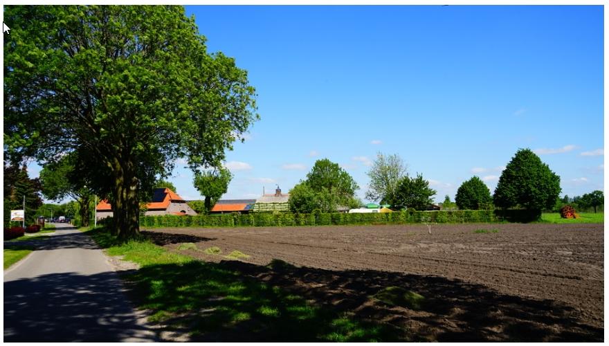 Foto: Toon Boons, Tilburg