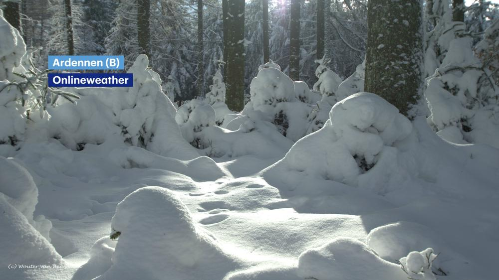 Sneeuw_Ardennen.jpg