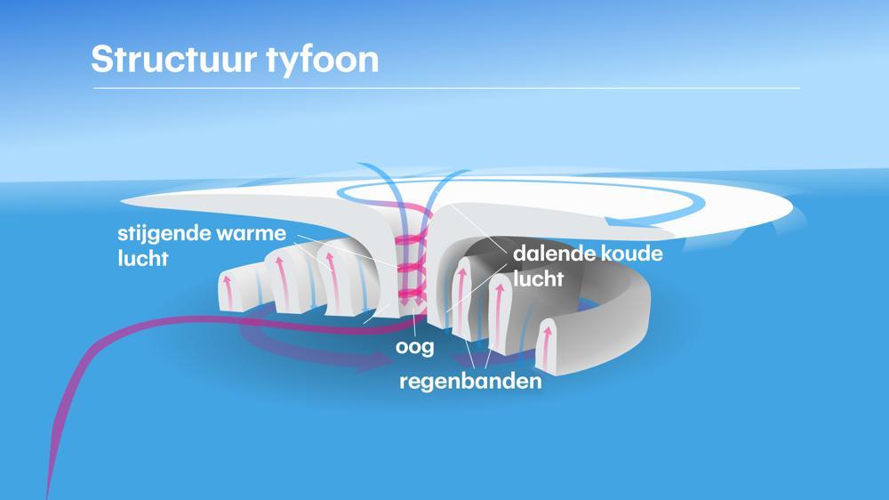 Structuur_Tyfoon.jpg
